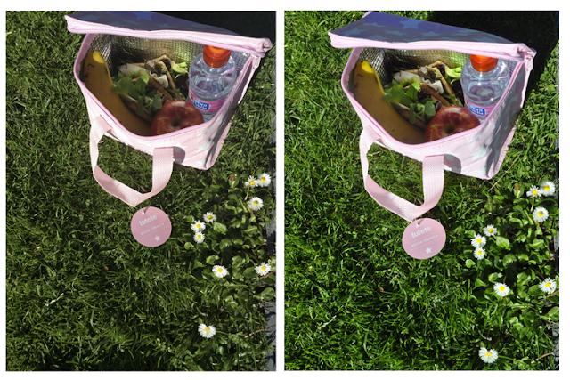 la bolsa rosa sobre hierbsa, misma foto casi mismo encuadre  tomada con distintos dipositivos