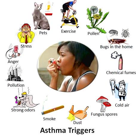 Gejala Penyakit Asma dan Cara Alami Mengobati Dengan Ramuan Tradisional