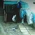 Ladrão é expulso de casa de idosa por dois Pitbulls, veja o vídeo