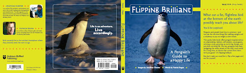 Flipping Brilliant: A Penguins Guide to a Happy Life