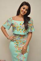 Nikki Galrani in Cute Dress Dress At Marakathamani Success Meet ~  Exclusive 027.JPG