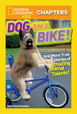 https://clubs.scholastic.com/national-geographic-kidsand%238482%3B-chapters%3A-dog-on-a-bike%21/9781338256284-rco-us.html