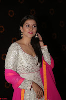 Mannara Chopra Cuteness overloaded At Rogue Audio Launch ~  013.JPG