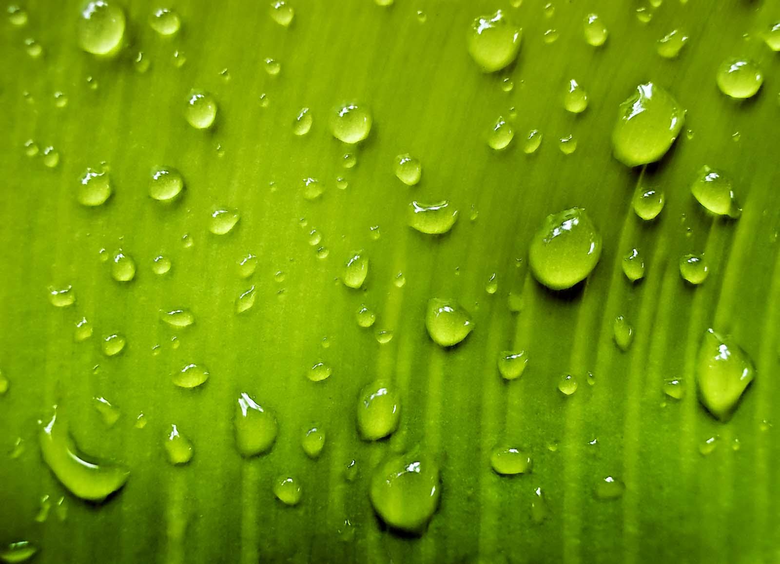 Imazes Water Drop