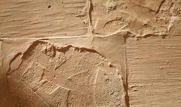 Довели, що фараони водили експедиції вглибину Африки