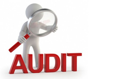 Jenis Jenis Audit