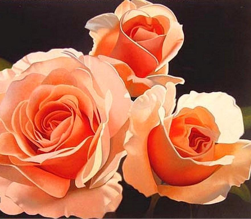 rosas al leo cuadros al leo de flores