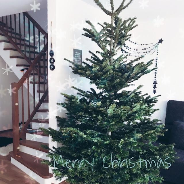 merry christmas, weihnachtsbaum, lotuscrafts, geschenk