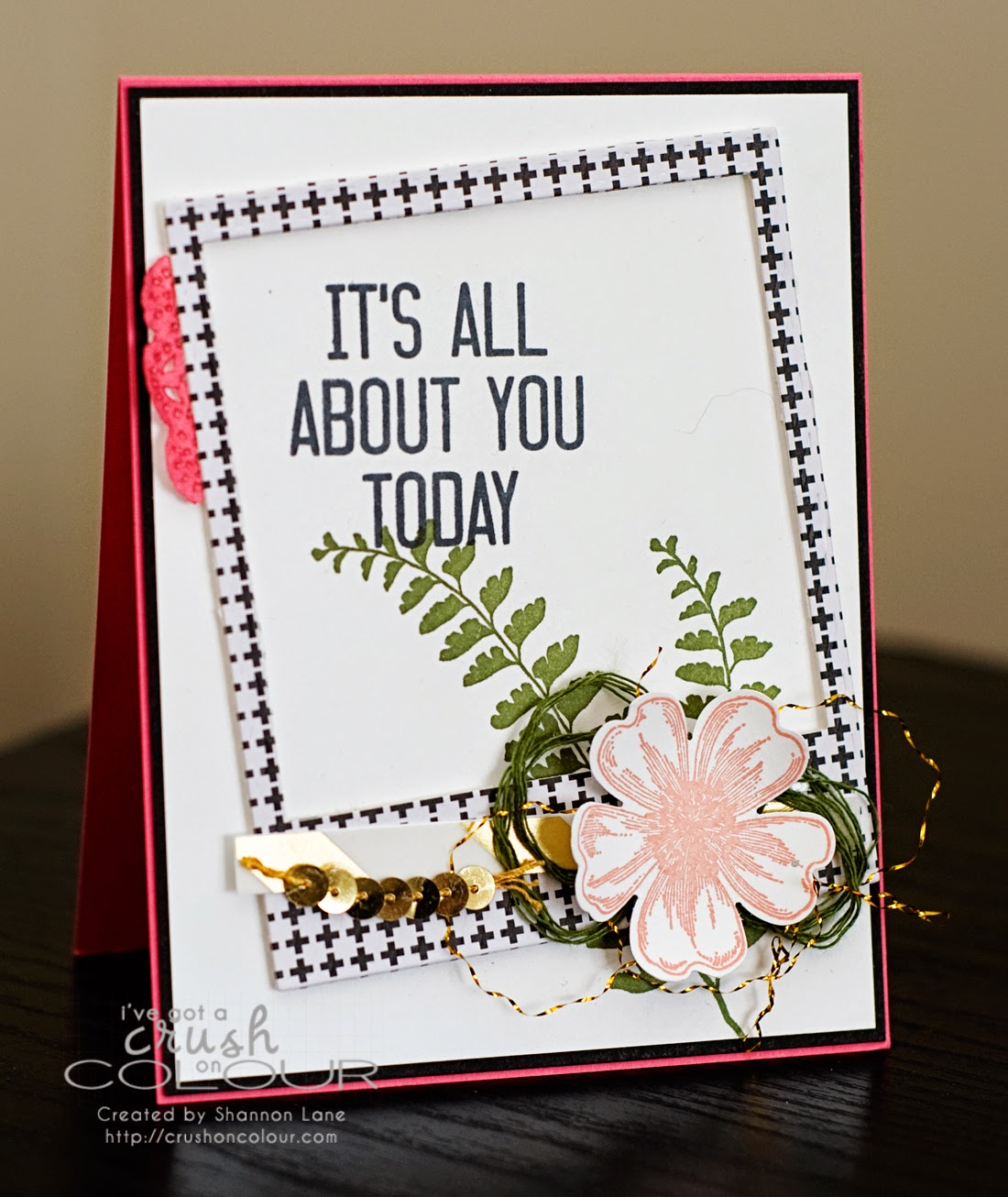 Crush On Colour It S All About You Girly Modern Birthday Card