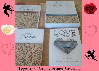 Tapestry of Grace Primer Review and Giveaway