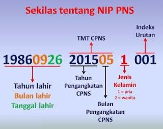 NIP Lulus CPNS 2018