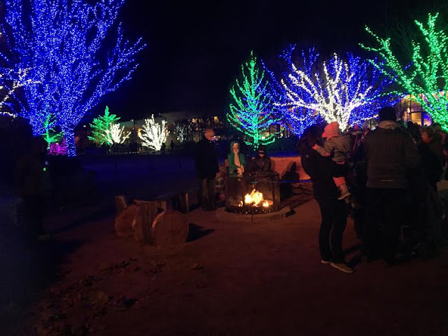 Illumination lights up nature at the Morton Arboretum this holiday!