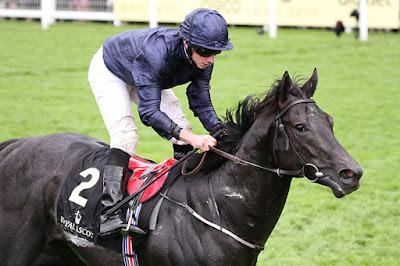 Caravaggio Derby Horse