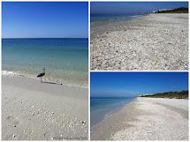 Experimente Aus Meiner Che Florida - Fort Myers Beach