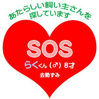 https://mon-ju.blogspot.jp/2017/06/blog-post.html