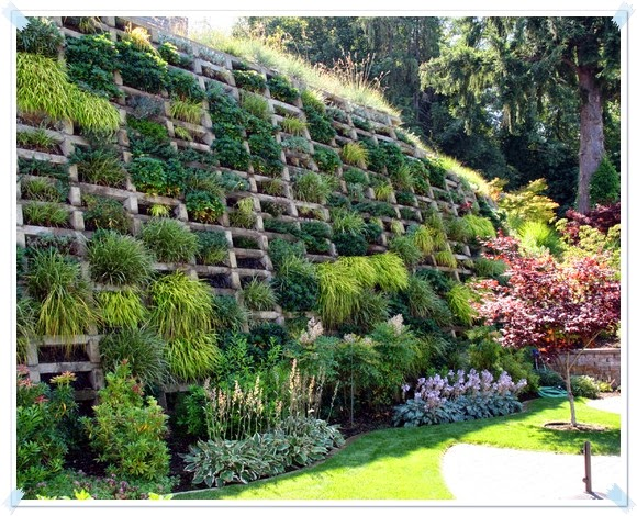 Hillside Terrace Gardens u2013 How To Build A Terrace Garden In Your - faire son plan de maison soi meme