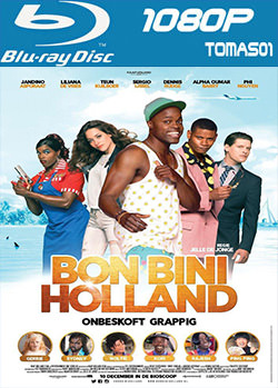 Bon Bini Holland (2015) BDRip m1080p