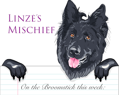 Linzé's Mischief, a public journal by Linzé Brandon, online journal, Belgian shepherd dog holding paper