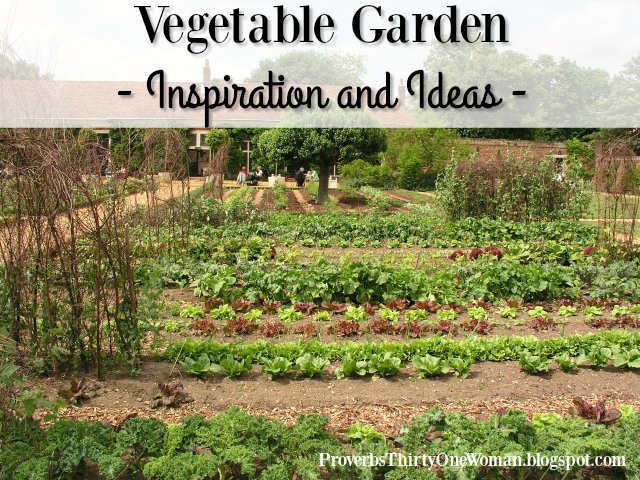 Vegetable garden inspiration and ideas proverbs 31 woman for Garden inspiration ideas