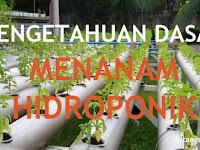 Pengetahuan Dasar tentang Cara Menanam Hidroponik