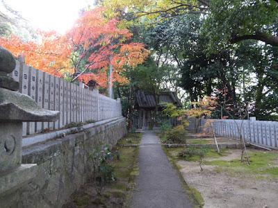 大阪府四條畷市 御机神社 参道 モミジの紅葉