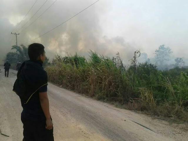 300 Hektar Lebih Lahan Di Ogan Ilir Terbakar