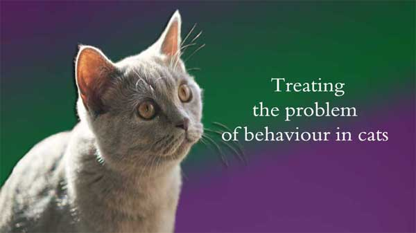 Treating the problem of behaviour in cats