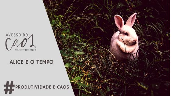Imagem do Coelho, uma referência ao romance Alice no pais das maravilhas em que o coelho vivia atrasado correndo atras do tempo