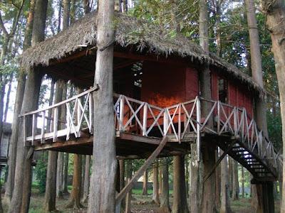 Tree Huts at Padmapuram Garden, Vishakhapatnam