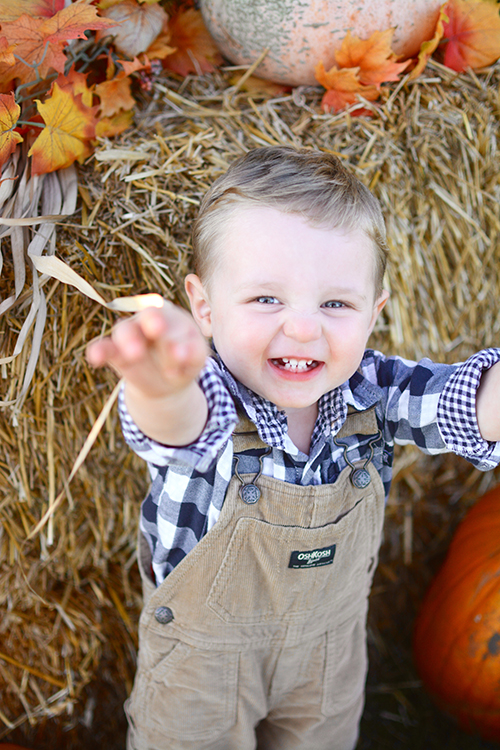 Pumpkin Patch Memories, Fall | My Darling Days