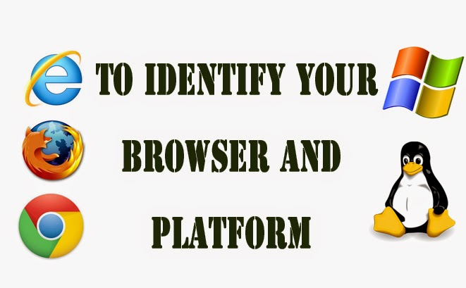 identify the browser and platform