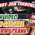 Membongkar Video Calon Sarjana dan The Shiny Peanuts