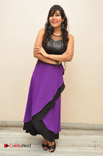 Telugu Actress Rachana Smith Stills at Money is Honey Audio Release  0067.jpg