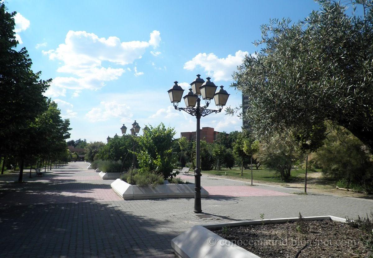 Conocer madrid real jard n bot nico alfonso xiii for Entrada jardin botanico madrid