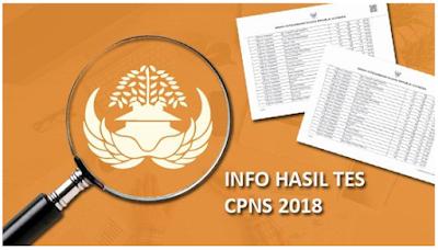 32 Instansi, Pengumuman Hasil Akhir Kelulusan CPNS