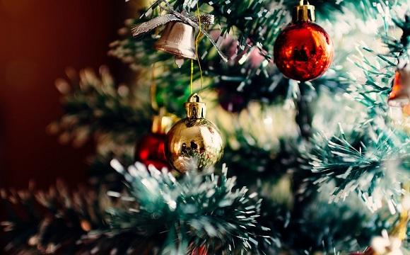 10 Frasi Di Natale.Frasi Sull Albero Di Natale Scuolissima Com