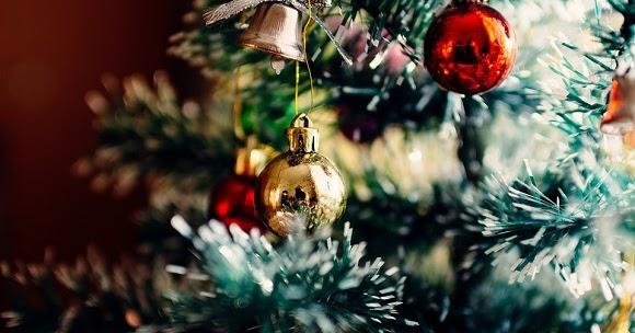 Albero Di Natale Frasi.Frasi Sull Albero Di Natale Scuolissima Com