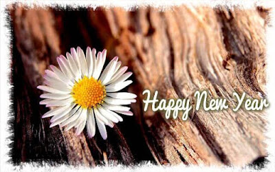 Happy New Year Full HD Wallpapers 2020