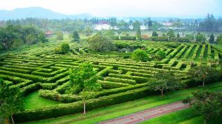 Ini adalah salah satu daerah agro-wisata paling populer di Puncak Bogor yaitu Taman Bunga Nusantara. Taman Bunga Nusantara merupakan salah satu kawasan agrowisata di Puncak Bogor Jawa Barat, yang meliputi berbagai tanaman dan bunga yang sangat indah dari berbagai negara