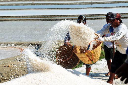 Dalam masuki musim cuaca seperti ini pasti akan sulit pedagang mencari garam Karena pasti di masa cuaca hujan baik di intensitas sedang / ringan akan berdampak pada produksi garam www.kraksaan-online.com