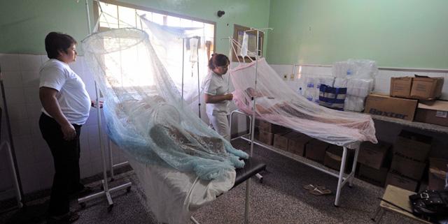 Control De Plagas En Sanidad Ambiental: El Dengue Pone En