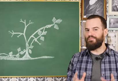 Το φυτό που βλέπει