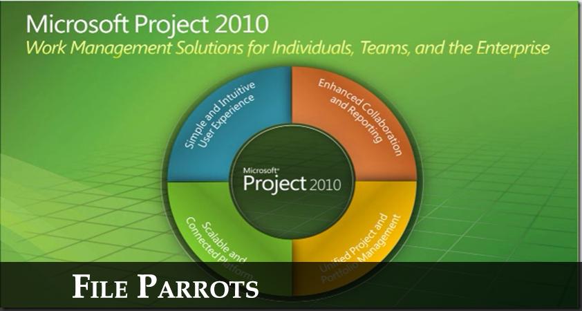 Latest Microsoft Project Professional 2010 Software