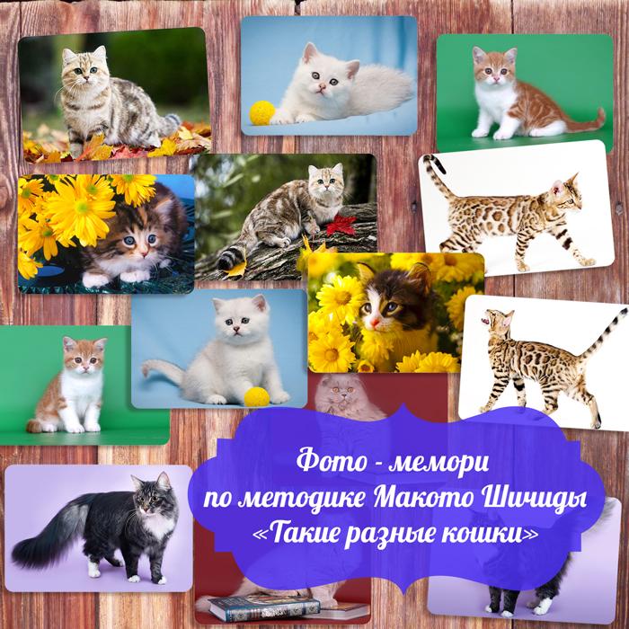 Методика Макото Шичиды для детей, игра фото — мемори «Такие разные кошки»