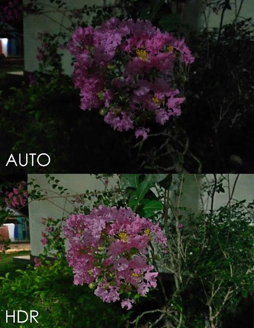 Hasil Kamera ASUS Zenfone Selfie dengan Kondisi Pencahayaan Kurang (Gelap)