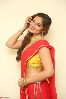 Actress Ashwini in Golden choli Red saree Spicy Pics ~  110.JPG