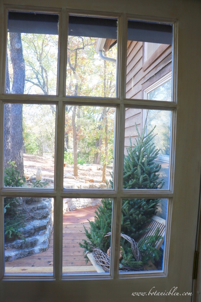 view-exterior-christmas-tree-through-windows