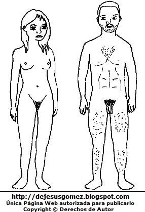 Dibujo del cuerpo humano para colorear pintar e imprimir,  cuerpo de un hombre y una mujer (Adultos desnudos) de Jesus Gómez