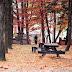 Mùa thu, mùa du lịch Hàn Quốc hấp dẫn nhất!