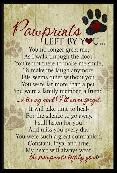 Pawprints Left By You Best Quotes 365